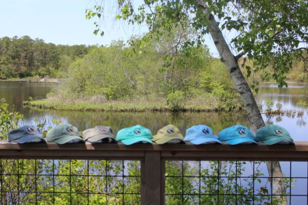 hats cool colors