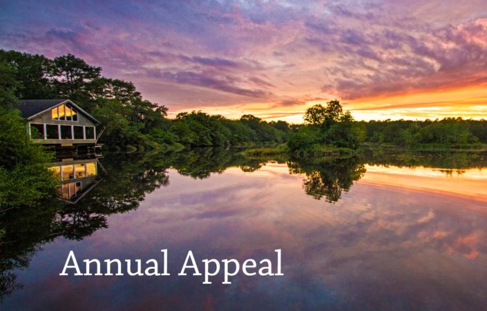 Annual Appeal 2018