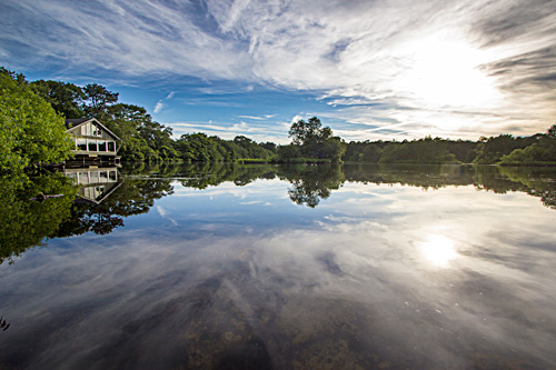 The pond at Quogue Wildlife Refuge, photo by Robert Seifert