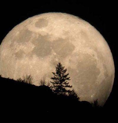Full Long Night Moon Hike