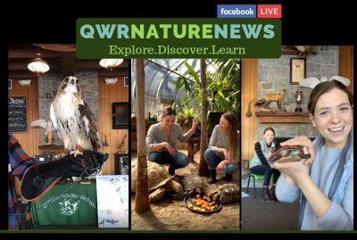 QWR Nature News