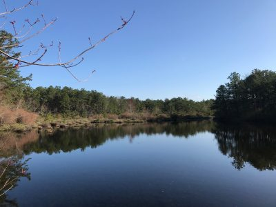 Guided Sunset Nature Hike to North Pond (Social Distance Program)