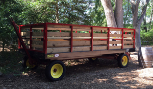 Wagon Ride and Story Telling