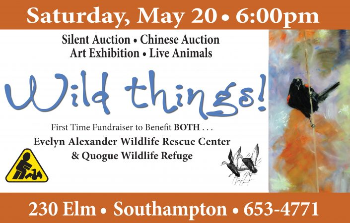 WILD THINGS! Silent Auction | Chinese Auction | Art Exhibition Fundraiser