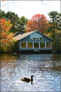 Lodge at Quogue Wildlife Refuge by Amanda Devitt