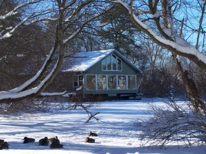 nature center in winter