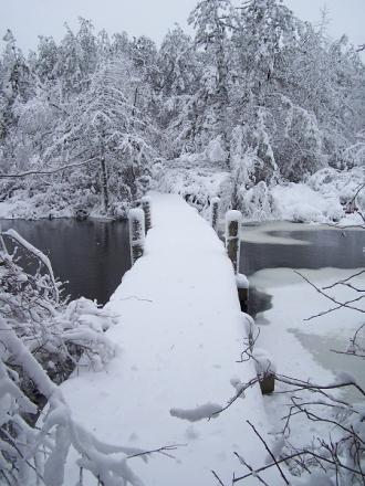 Winter-Pics-004