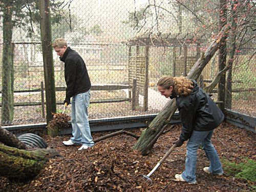 Volunteers working in cage